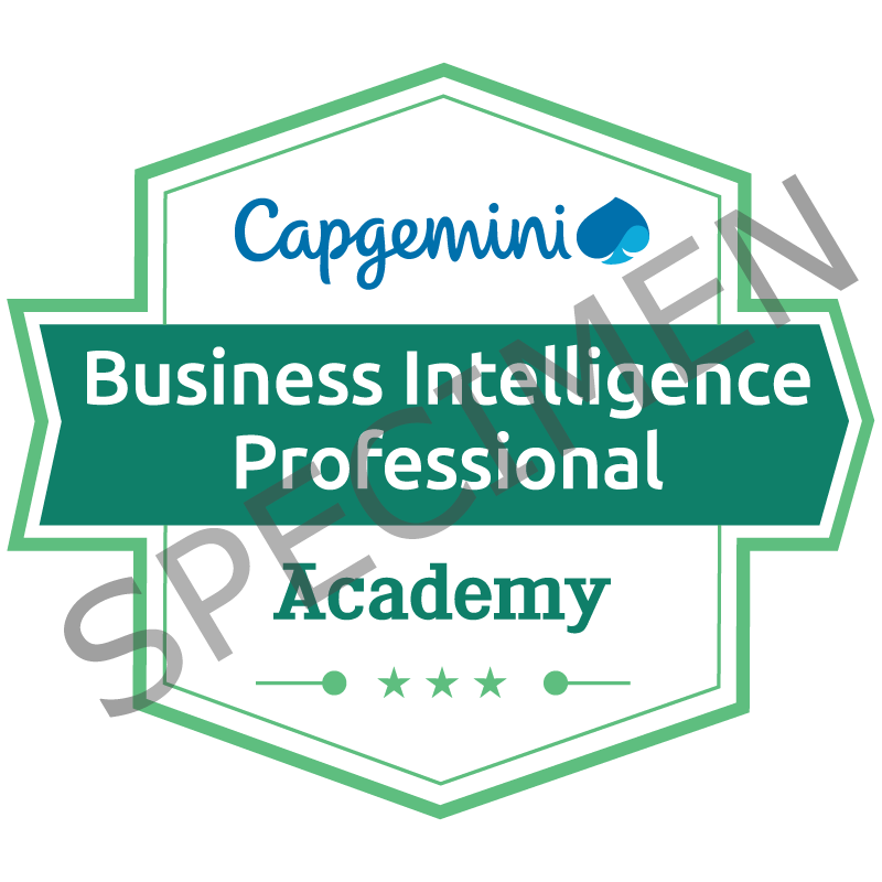 Business Intelligence Professional
